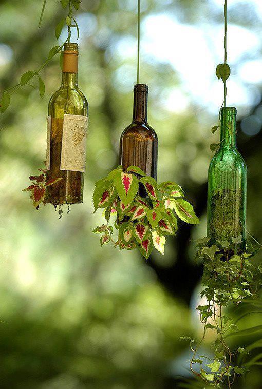 wino biologiczne